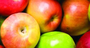 Idaho apples