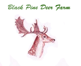 Black Pine Deer Farm Logo