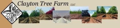 Clayton Tree Farms
