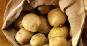 Irish potatoes casserole