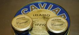 Idaho Caviar