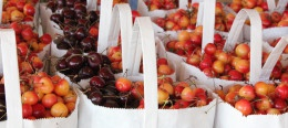 Bags of cherries