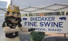 Snedaker Logo